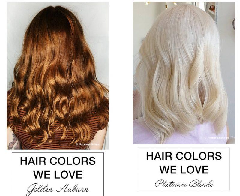 Trending Colors 6
